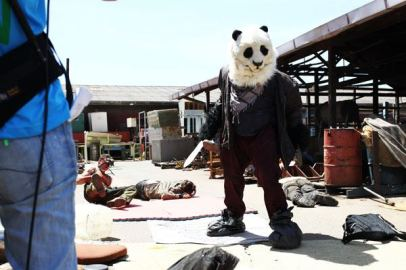 """Wasterlander Panda"" taken from facebook.com/wastelanderpanda"